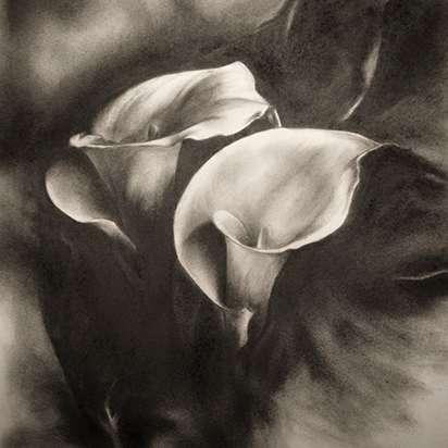 Artwork by Leslie Holland