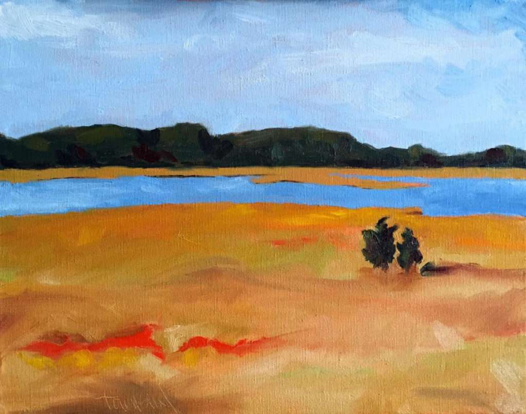 dawn townsend autumn marsh