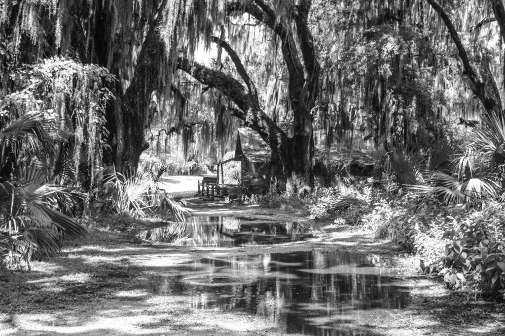 Rick McAllister Backroads of Florida in Black & White