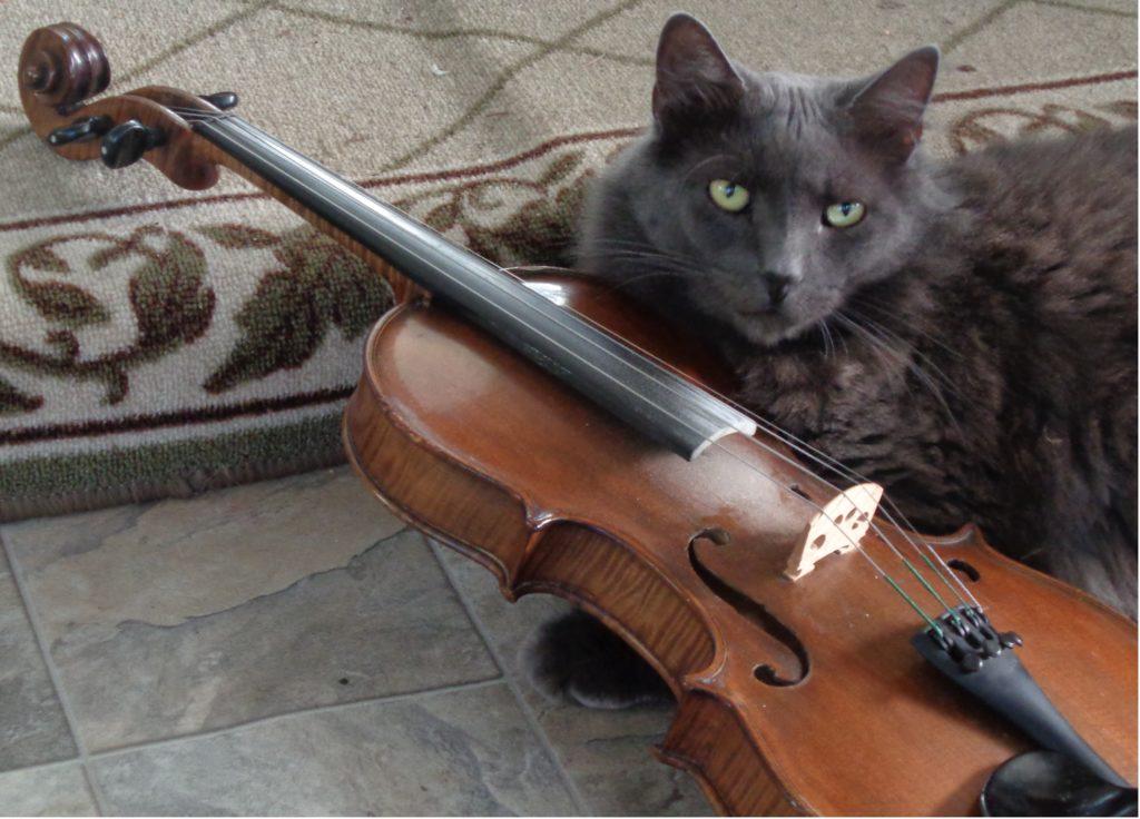 Sam Adams fiddle class