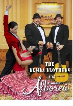 Flamenco Special Music Night January 2019