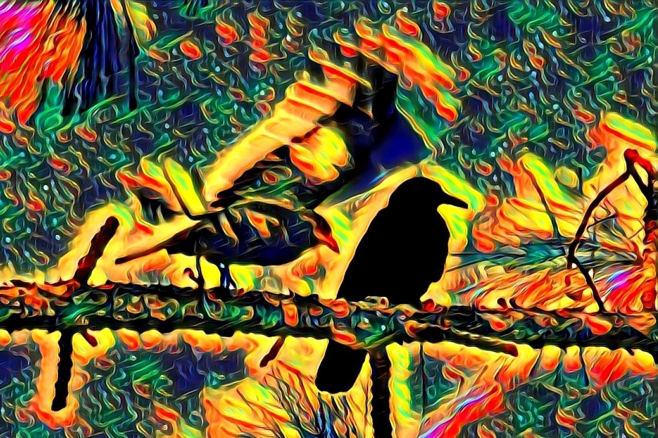 Mr. Crow Ignores His Doppelganger by Rick de Yampert RET TRU FINAL crop 2017 October 19