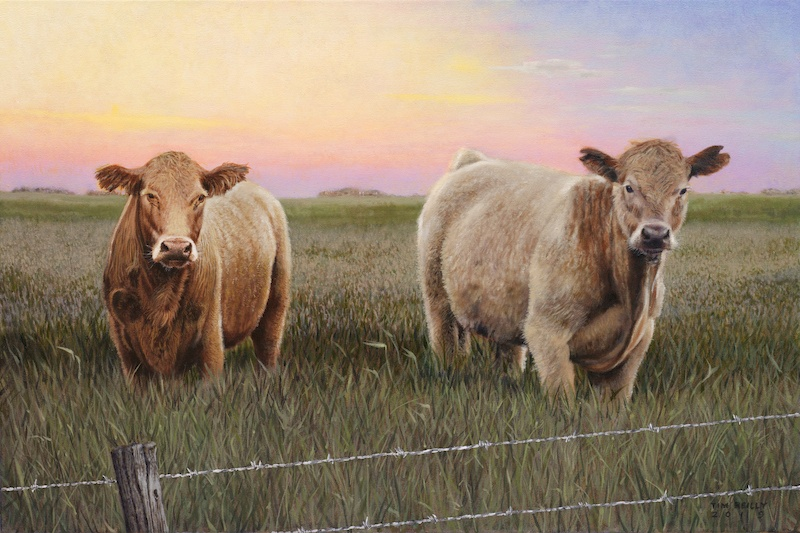 Reilly, Tim_New Wire_Oil on Canvas_24 x 36